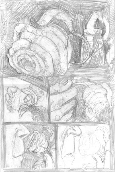 la rosa (1)